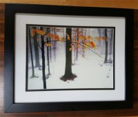 Hide-A-Frame - Tall Trees in Snow